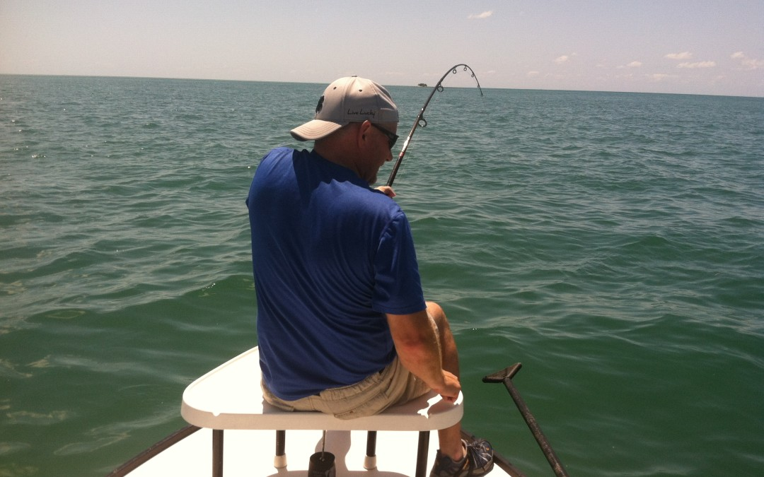Tampa Bay Fishing Charters 5/25/15