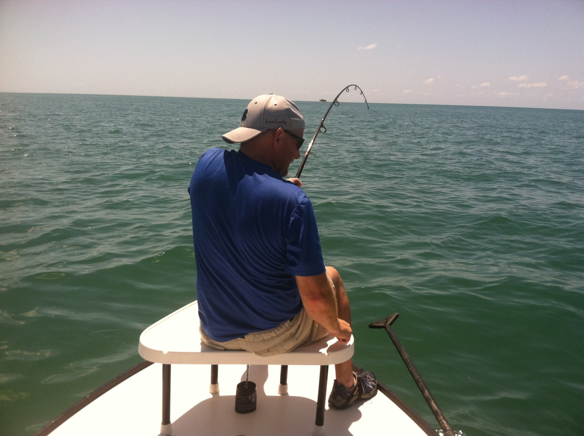 Tampa bay tarpon charters tampa fishing charters for Fishing charters tampa