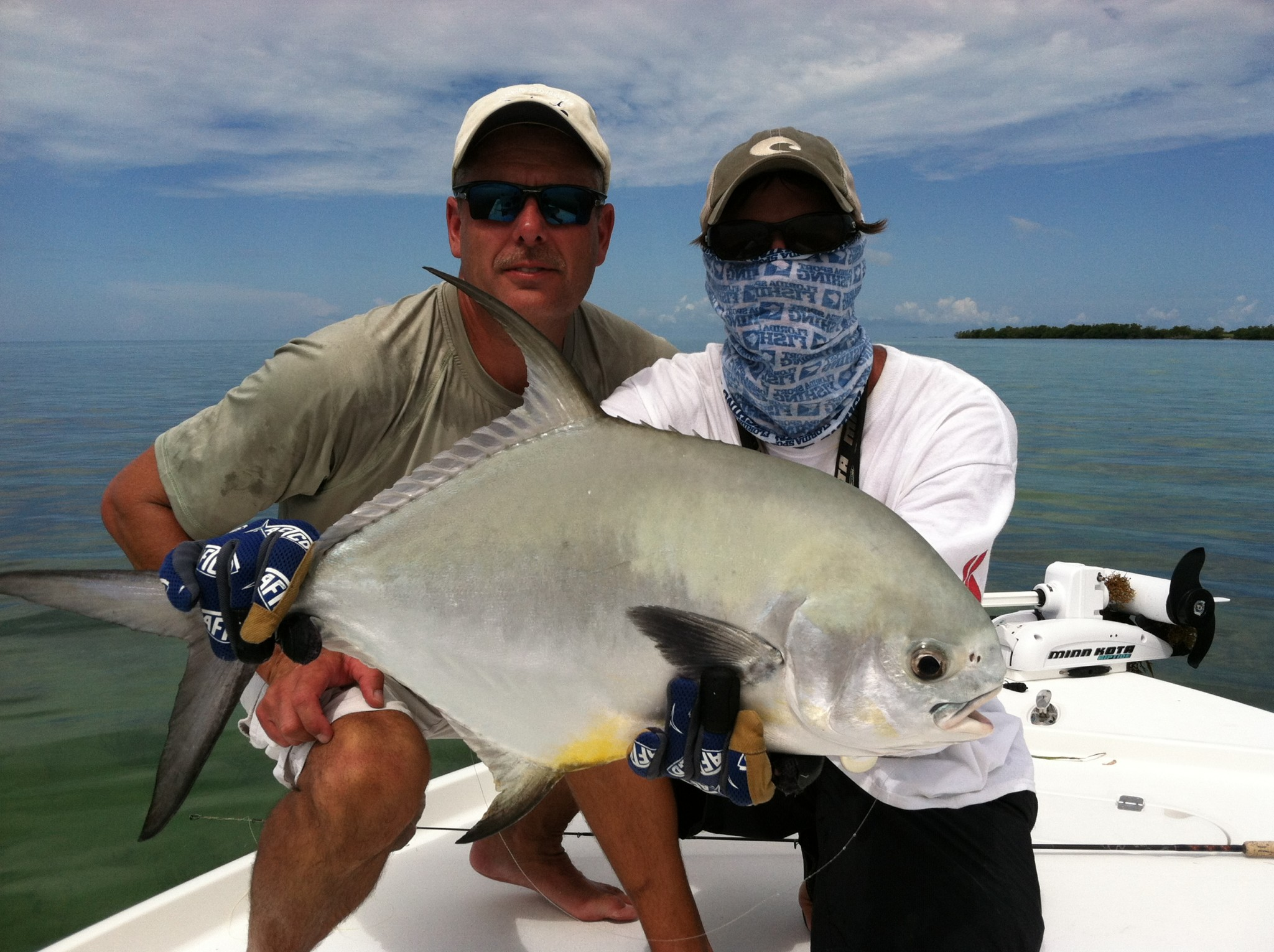 Tampa bay fish species tampa fishing charters for Tampa florida fishing charters