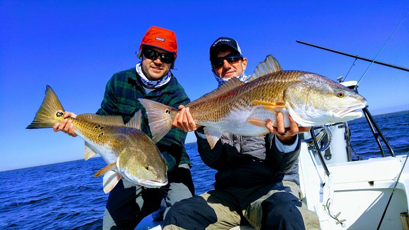 Tampa Fishing Charters for Redfish