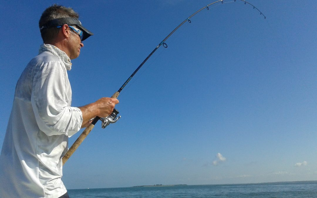 Tampa Fishing Charters for Tarpon