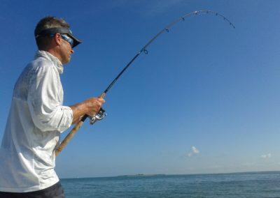 Tampa Fishing Tarpon Guide