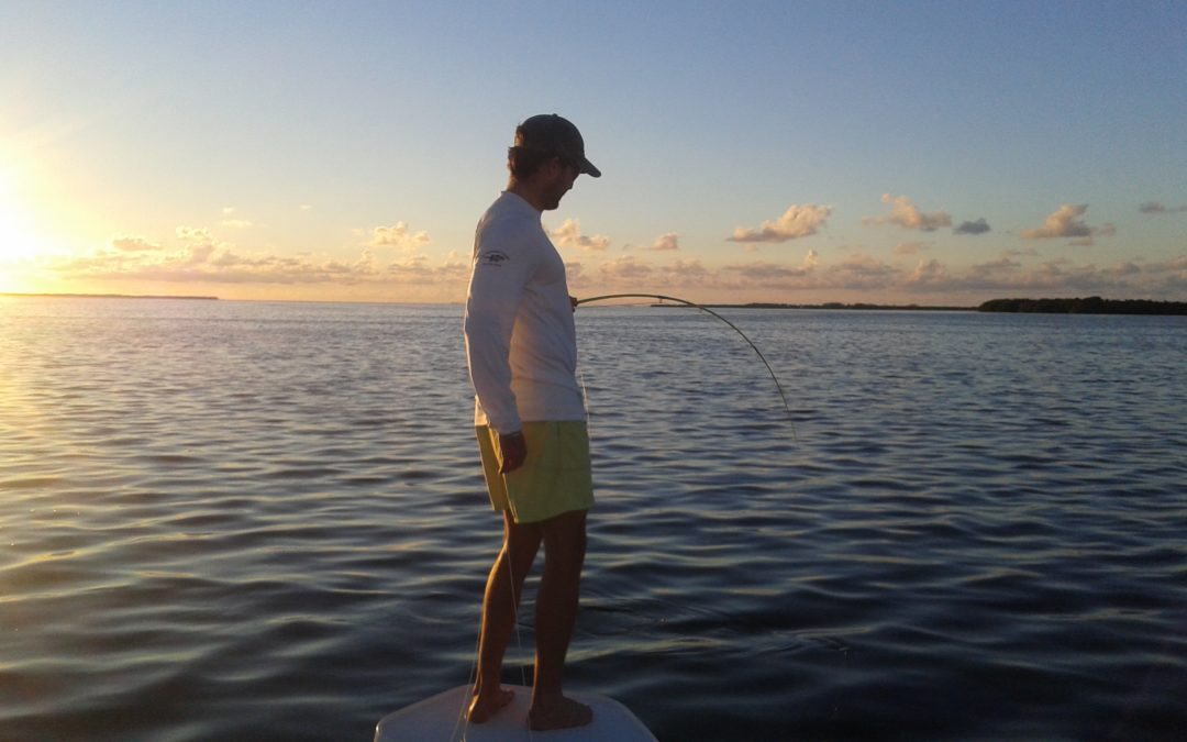 Tampa Bay Fishing Charters in the fall
